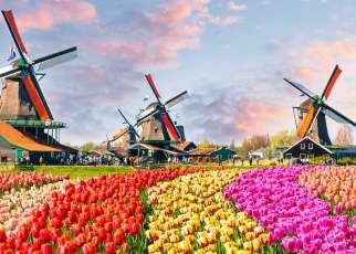 Kraje Beneluxu Comfort Belgia, Wyc. objazdowe