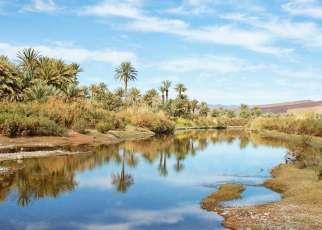 Maroko - Magiczne Południe Maroko, Wyc. objazdowe
