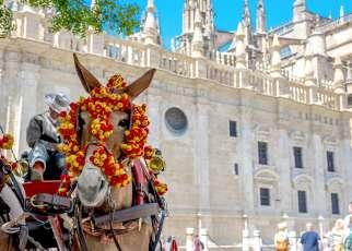 W Rytmie Flamenco Hiszpania, Wyc. objazdowe