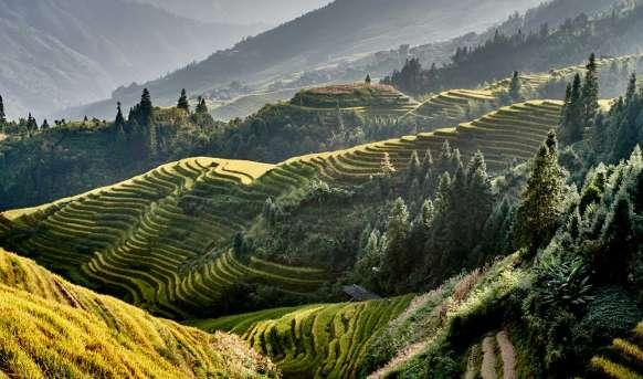 Wietnam i Chiny - przyczajony tygrys, ukryty smok #7