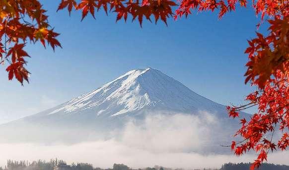 W krainie gejsz i samurajów de luxe Japonia, Wyc. objazdowe