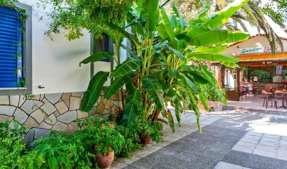 Anaxos Gardens - hotel