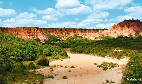 Madagaskar jak z bajki Madagaskar, Wyc. objazdowe