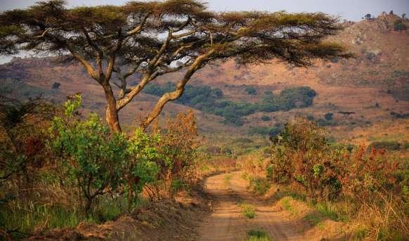 Malawi - Tanzania