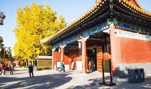 Pekin i okolice #22