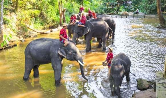 Rajska Tajlandia #5