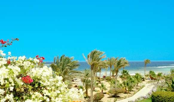 Royal Brayka Beach Resort (ex Zee Brayka) #12