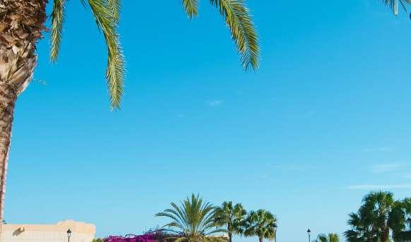 SBH Taro Beach #11