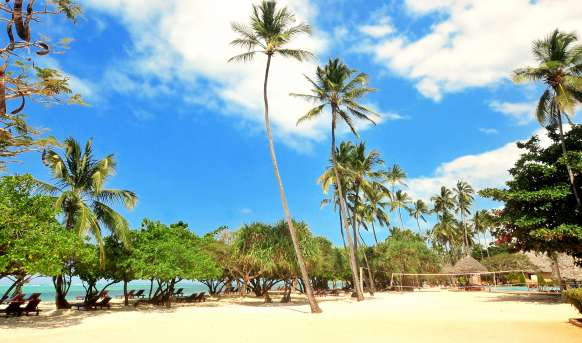 Neptune Pwani Beach Resort - basen