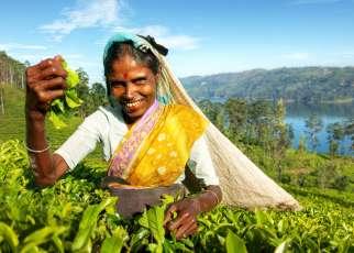 Sri Lanka egzotyczne wakacje Last Minute