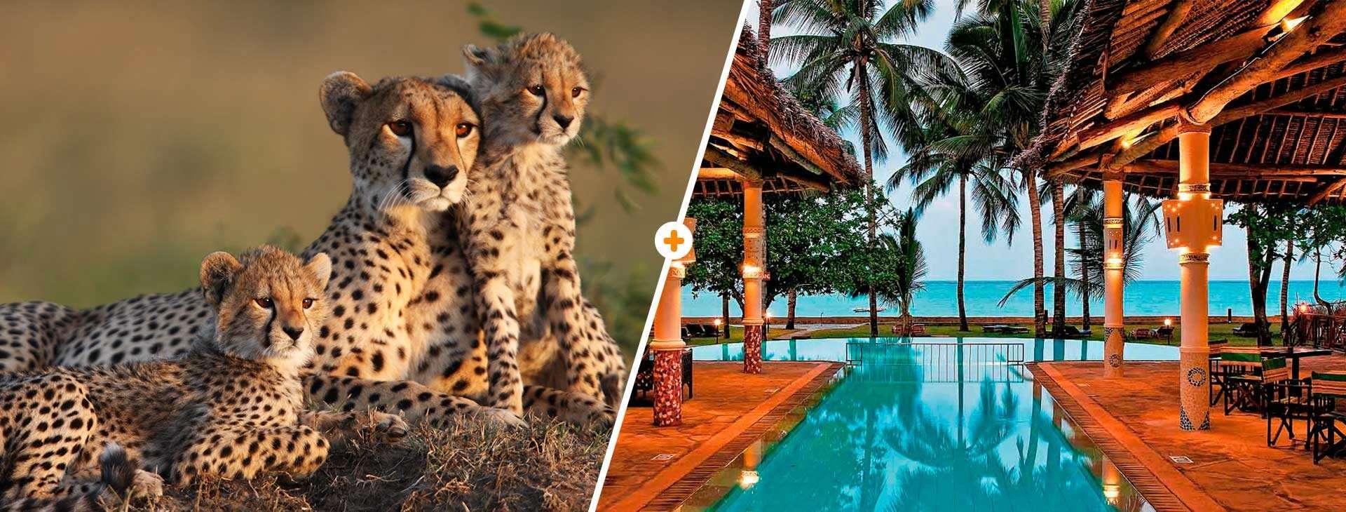Kenijskie Trio / Neptune Village Resort - basen