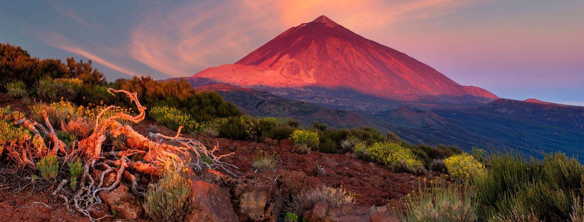 Teneryfa, La Palma, La Gomera i El Hierro - Kraina wiecznej wiosny