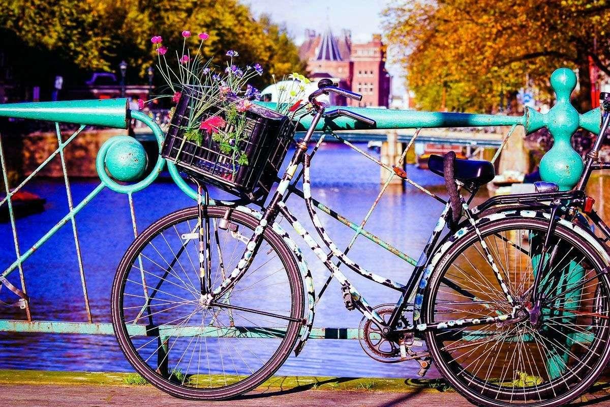 Amsterdam i Brema  - Festiwal