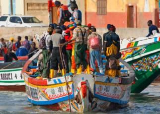 Polinezja Atlanty - Gwinea Bissau- Senegal- Gambia Gambia, Wyc. objazdowe