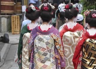 W krainie gejsz i samurajów Japonia, Wyc. objazdowe
