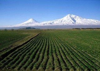Armenia Armenia, Wyc. objazdowe