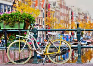 Ozo Amsterdam