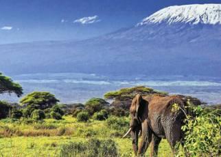 Powitanie z Afryką Kenia, Wyc. objazdowe