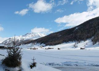 Chalet Florin Włochy, Lombardia, Livigno