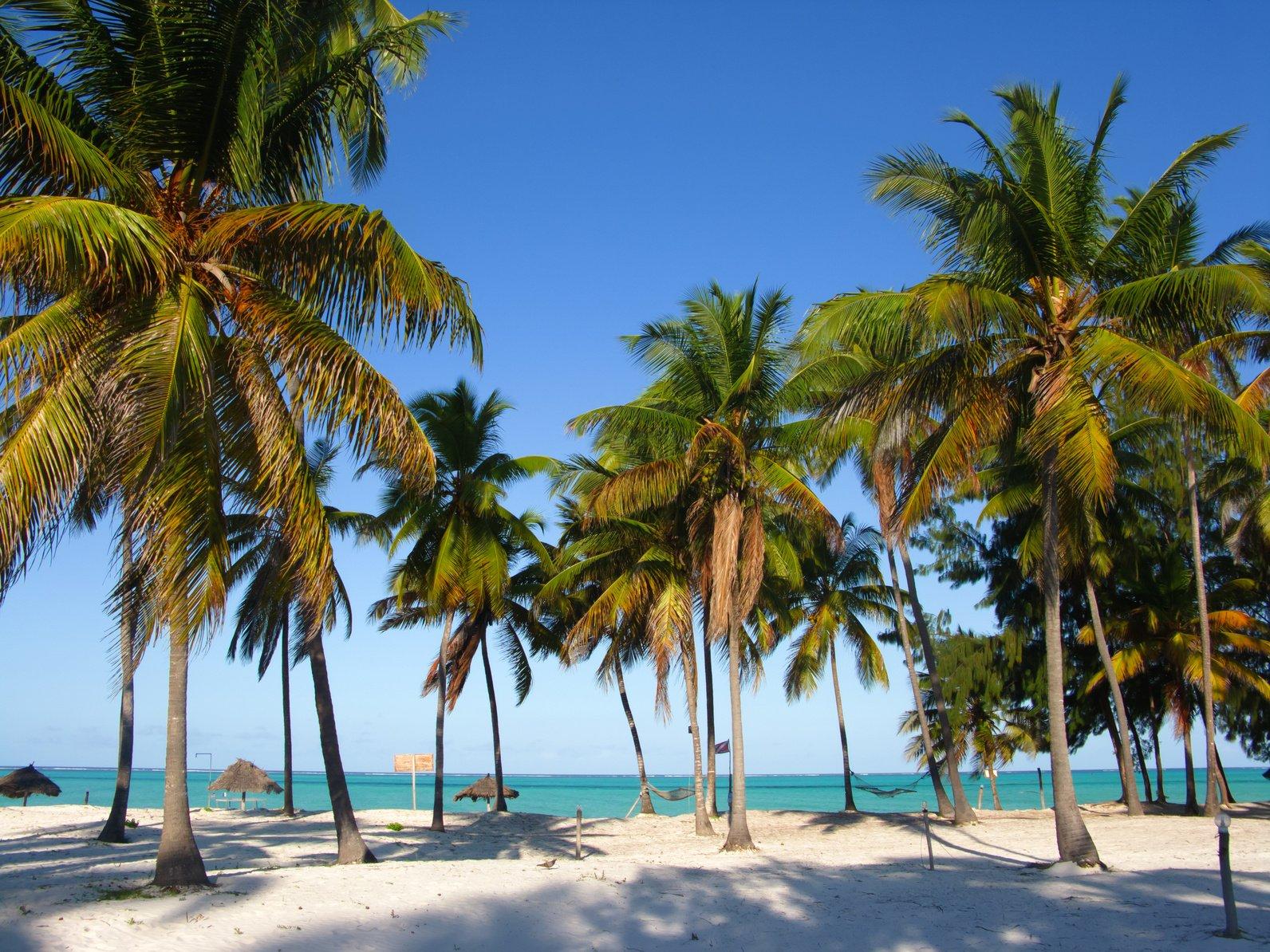 Egzotyczna zima na Zanzibarze!