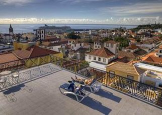 Orquidea (Funchal) Portugalia, Madera, Funchal