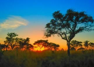 Mozambik i safari w RPA Republika Południowej Afryki, Wyc. objazdowe