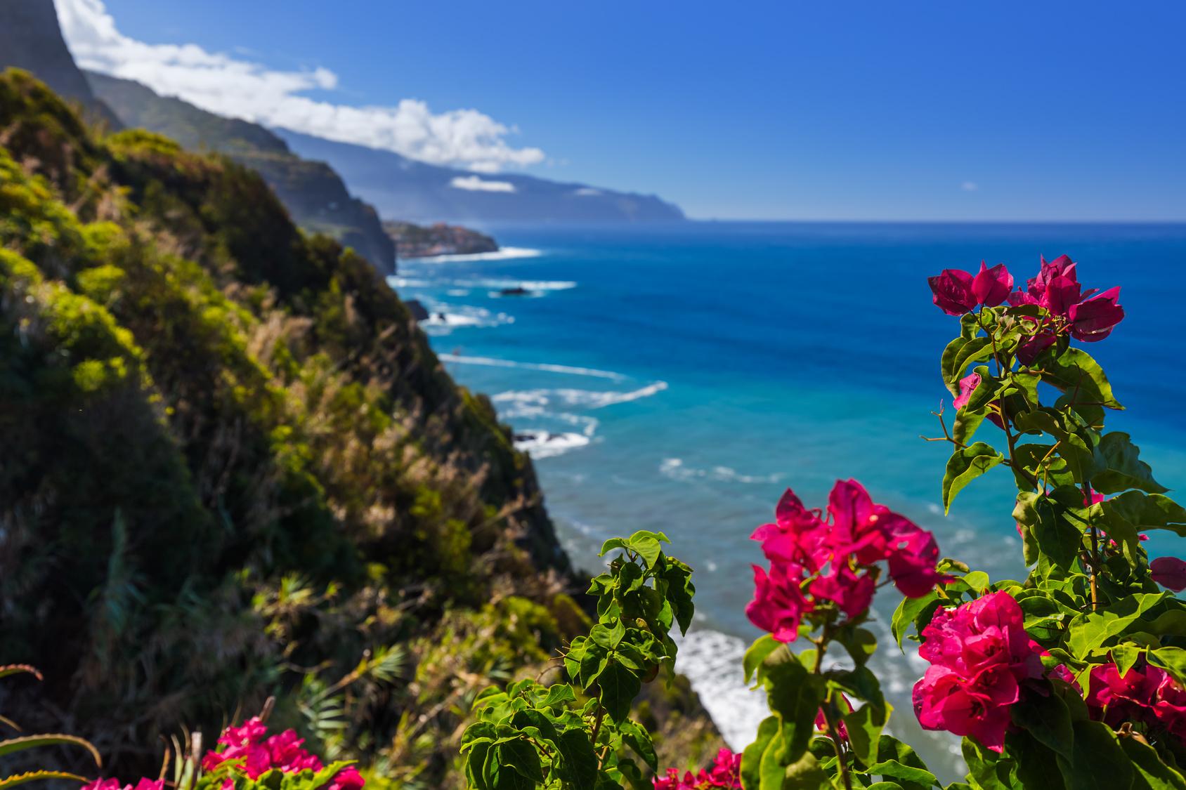 Madera-krajobraz