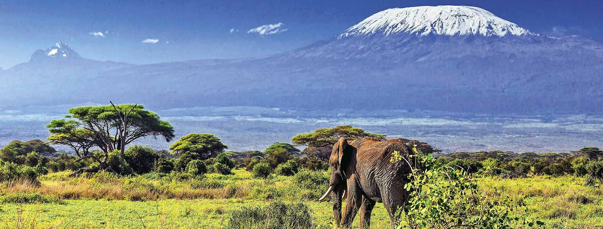 Powitanie z Afryką / Southern Palms Kenia, Wyc. objazdowe