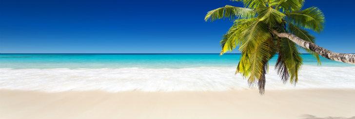 Egzotyka - wczasy i wycieczki