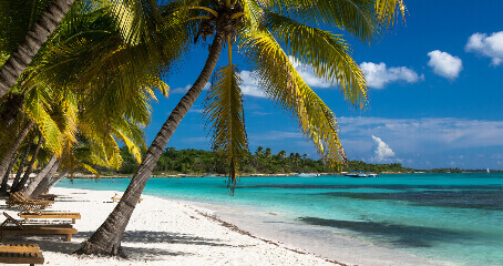Egzotyka Dominikana